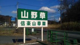 NEC_0689